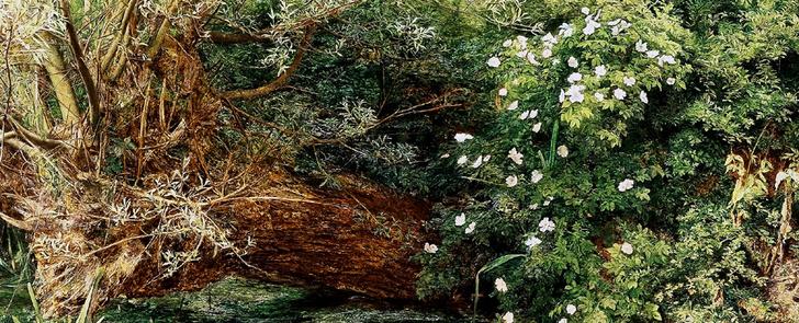 Фото №3 - Культурный код: Викторианские эмодзи