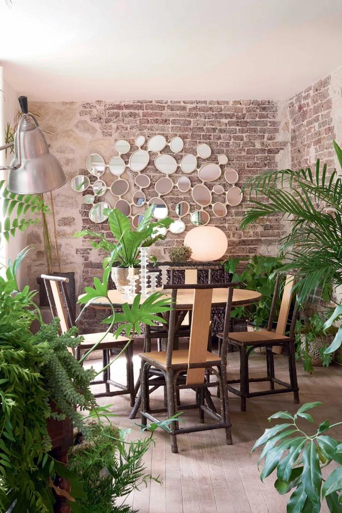 Фото №4 - Растения в интерьере: 7 идей для домашнего сада