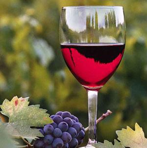 Фото №1 - Молитвы для винных бочек