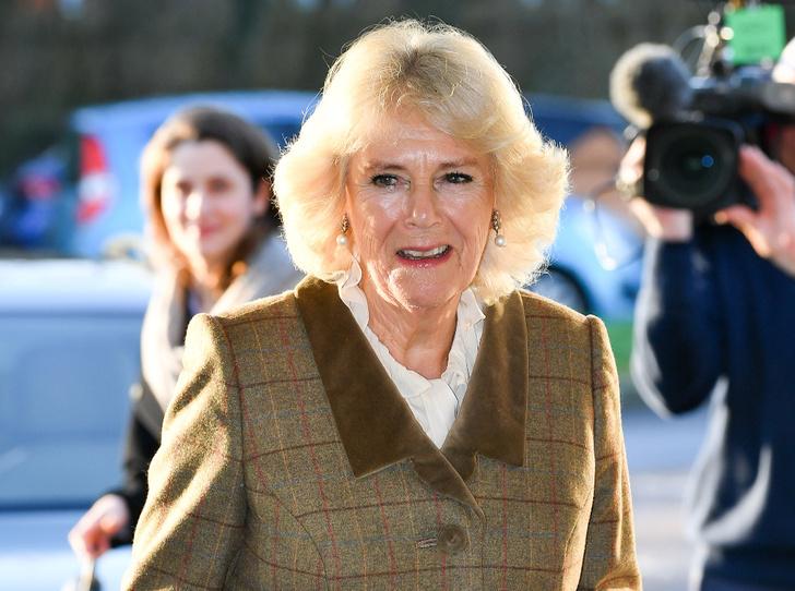Фото №1 - Ответ с подвохом: герцогиня Камилла и ее бесценная реакция на вопрос о Гарри и Меган