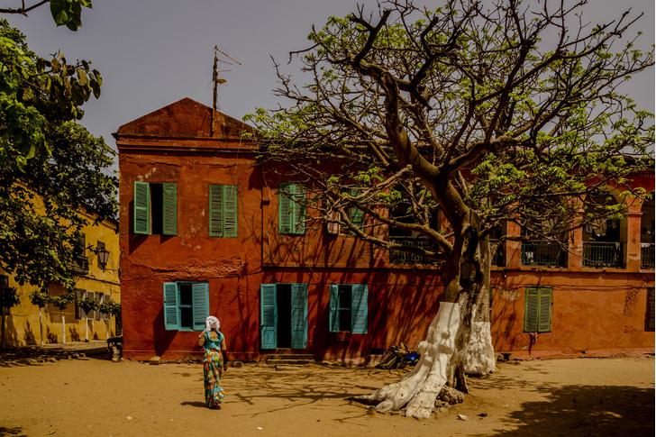 Фото №6 - Невольничий остров: прошлое и настоящее Горе в фотографиях