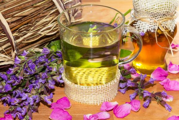 Картинки по запросу Травяной чай из шалфея