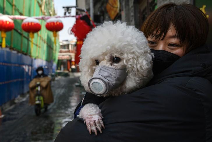В России ограничили продажу медицинских масок и перчаток