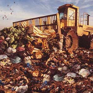 Фото №1 - Неаполь погребен под горами мусора