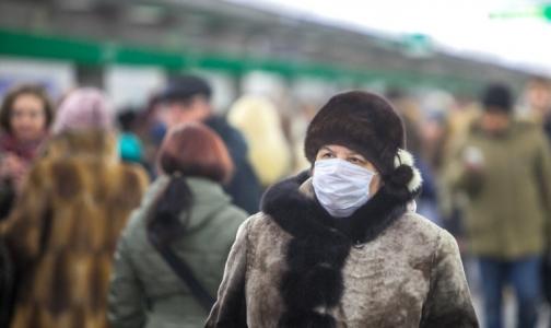 Фото №1 - Эпидпорог по заболеваемости гриппом и ОРВИ в Петербурге превышен уже на 33%