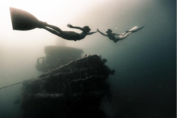 Фото №1 - Встреча под водой