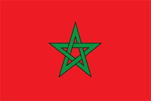 Фото №3 - Путеводная звезда: что значит красный флаг