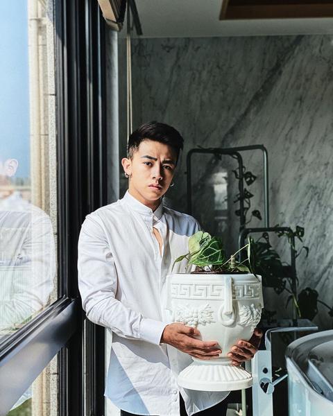 Фото №1 - Дом человека, одержимого комнатными растениями: фото