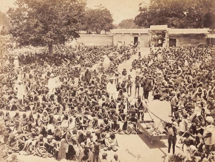 Фото №5 - Мадрасский мор: история Великого голода в Индии 1876–1878 годов в фотографиях