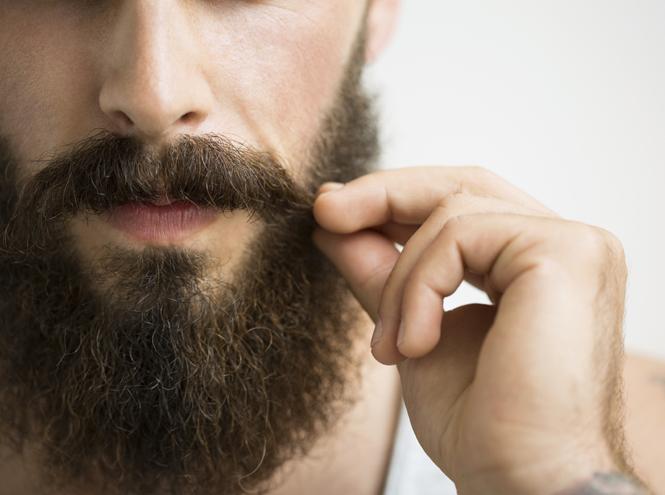 Фото №2 - Чтобы не кололась: что вам нужно знать о мужской бороде