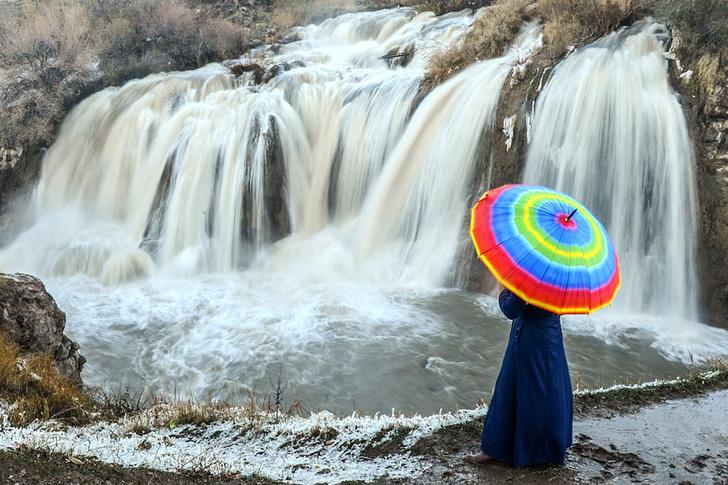 Фото №1 - Остановить поток