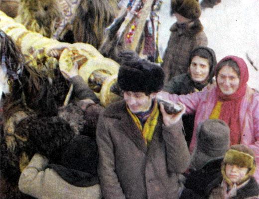 Фото №2 - Квидили спускается с гор