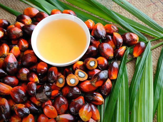 Фото №1 - 5 мифов о вреде пальмового масла, в которые пора перестать верить