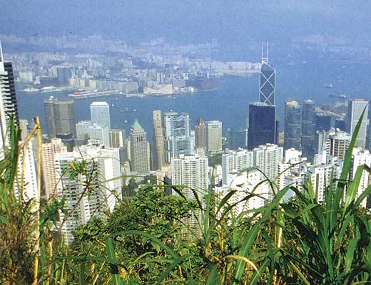 Фото №1 - Парус Гонконга