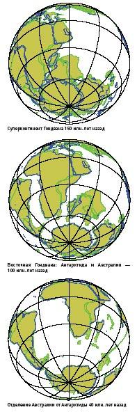 Фото №3 - Земля тетануров