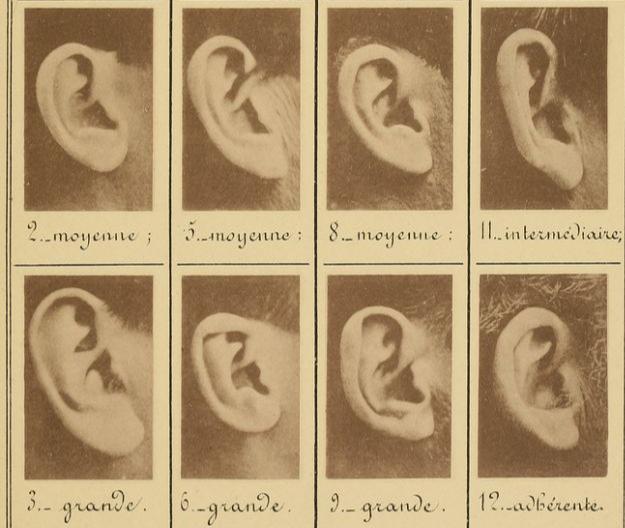 Фото №1 - 96 ушей французских преступников XIX века