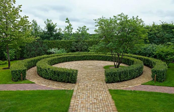 Фото №3 - Сад в миниатюре: советы начинающим садоводам