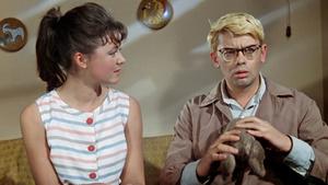 Фото №22 - Монро vs Хепберн и Дэвид Духовны в роли Нео: 10 легендарных фильмов, которые могли быть другими