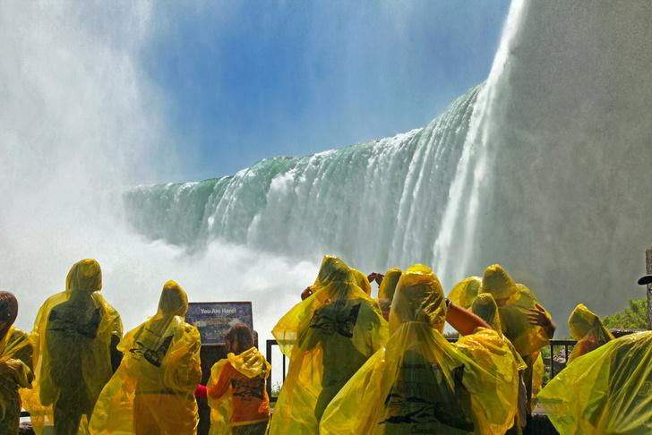 Фото №1 - Забытые у Ниагарского водопада вещи уйдут с молотка