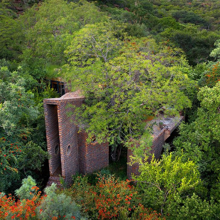 Фото №3 - Узкий дом в Южной Африке