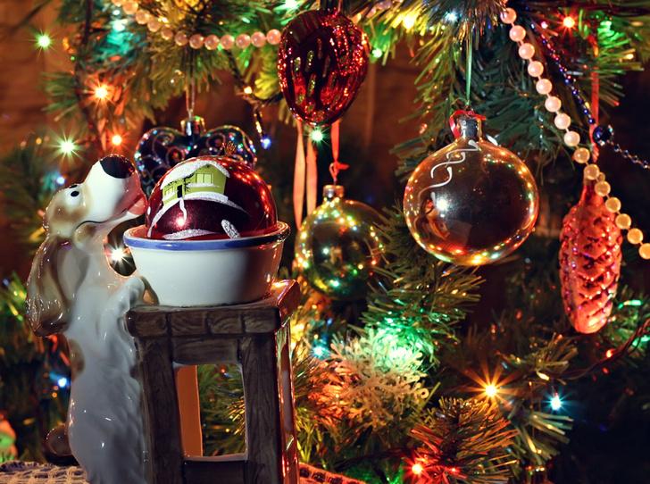 Фото №6 - Что говорит о вас ваша новогодняя елка?