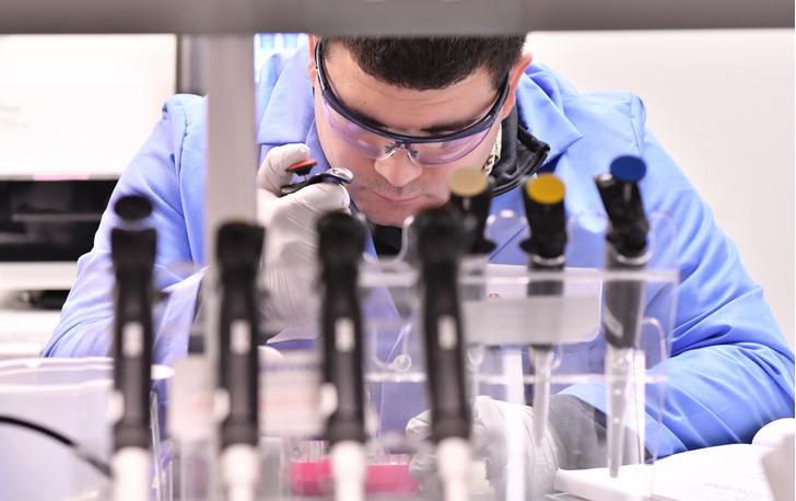 Фото №1 - В лаборатории вырастили пищевод из стволовых клеток