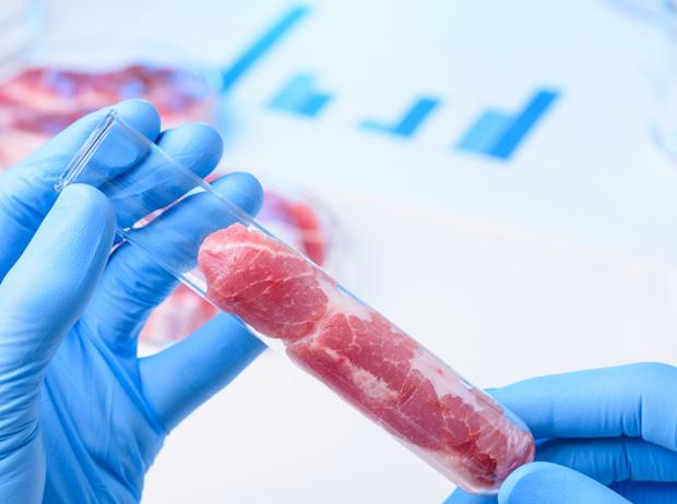 Фото №6 - Искусственное мясо: и люди сыты, и овцы целы