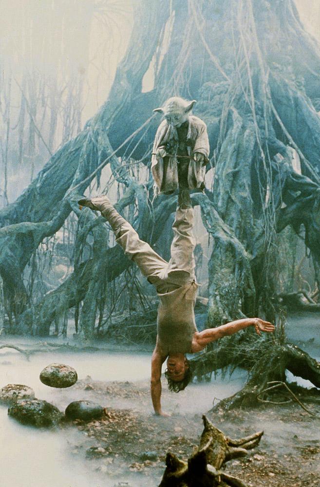 Фото №1 - Вычислен вес магистра Йоды из «Звездных войн»