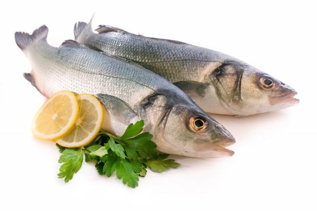 Рыба: полезные свойства и калорийность рыбы. Видео — www.wday.ru