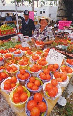 Фото №8 - Отведайте вкус «большого яблока»