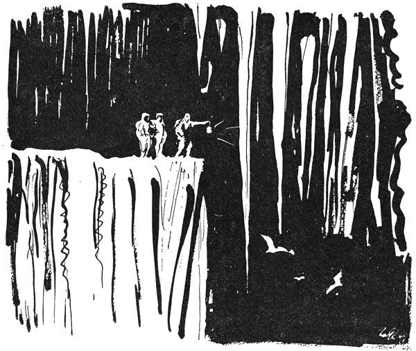 Фото №3 - Рафаэль Мачеевский. В пещере Гуачаро