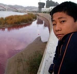 Фото №1 - Китай признал наличие экологических проблем