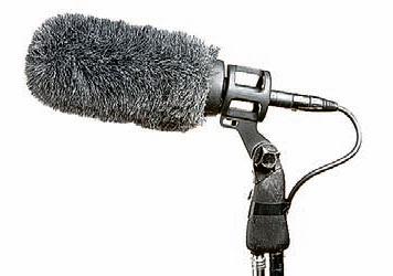 Фото №1 - Зачем на микрофон надевают меховой чехол?