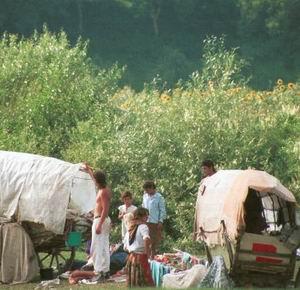 Фото №1 - ОБСЕ удостоило наградой Европейское общество по защите прав цыган