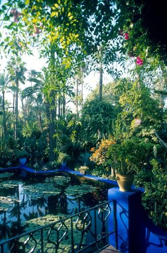 Фото №3 - Аромат дня: Atlas Garden от YSL Beauty