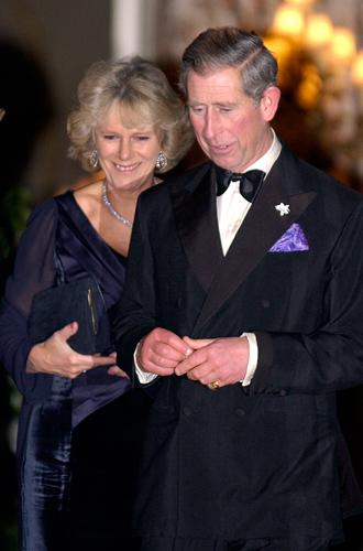 Фото №9 - Пропавшие вещи принцессы Дианы: как принц Чарльз оберегал себя и Камиллу от правосудия