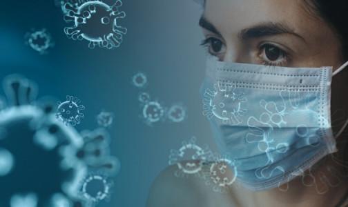 Фото №1 - Три в одном. В Индии обнаружены новые мутации коронавируса