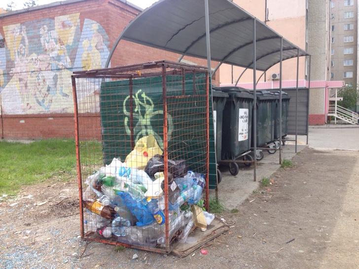 Фото №2 - Грязное дело: как горожане сортируют мусор