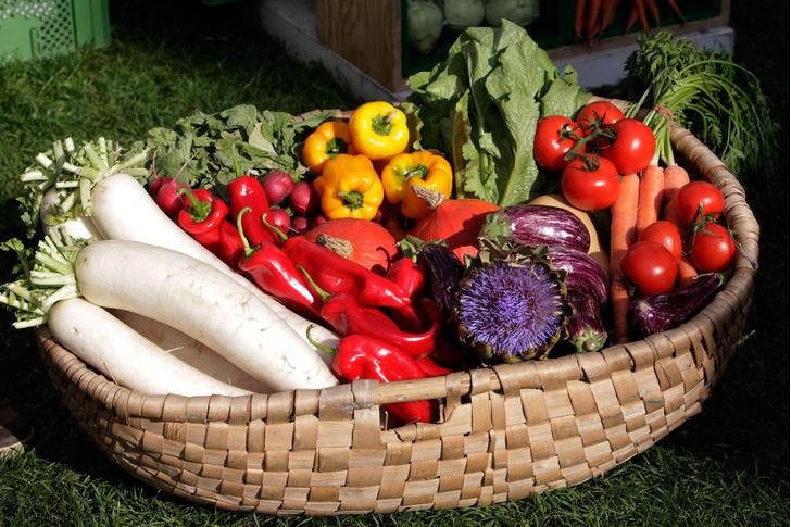 Фото №1 - Ученые предупредили об опасности веганства и вегетарианства