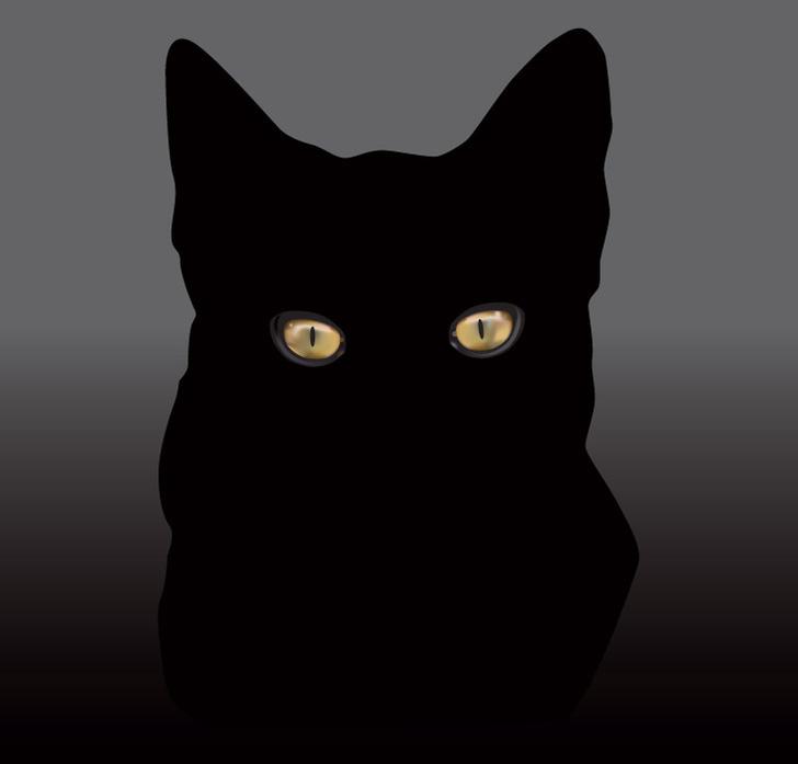 shutterstockСветящиеся в темноте глаза кошек нанесли большой ущерб репутации этих животных. На протяжении веков черные кошки считались спутниками ведьм, а убеждение, что глаза кошек светятся сами, дожило до наших дней. Однако простой опыт убеждает в обратном. Если посадить кошку в комнату без окон, то в полной темноте ее глаза светиться не будут. Сияние кошачьих глаз объясняется просто — они отражают свет исключительно от внешнего источника. Секрет же свечения глаза — в тонком отражающем слое, состоящем из прозрачных клеток. Когда луч света через роговицу и хрусталик достигает светочувствительной сетчатки, он поглощается не целиком. Часть света достигает внутренней сосудистой оболочки. У животных со светящимися глазами этот свет отражается прозрачными клетками назад, пронизывает сетчатку, увеличивая светочувствительность глаза, и узким пучком излучается наружу, что, собственно, и позволяет животному ночью видеть гораздо лучше.