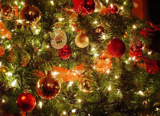 Фото №1 - У кого из звезд самая крутая елка?
