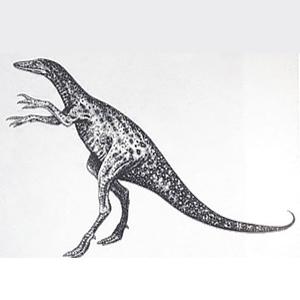 Фото №1 - Динозавр размером с курицу