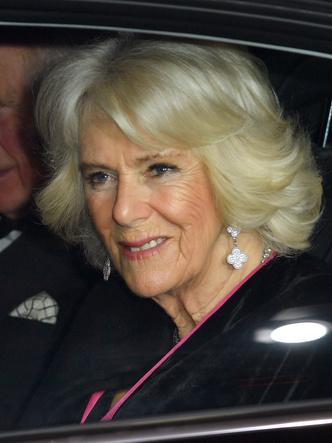 Фото №26 - Шкатулка будущей королевы: любимые украшения герцогини Камиллы