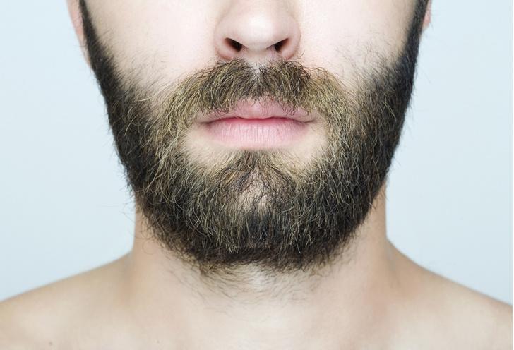 Фото №1 - Ученые объяснили моду на бороду