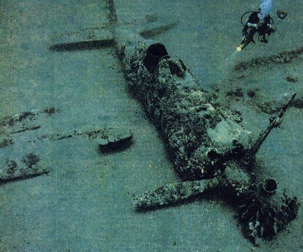 Фото №1 - Уцелевший в Тихом океане