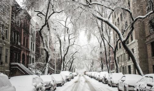 Фото №1 - Кардиолог: Теплая зима может «ударить» по здоровью