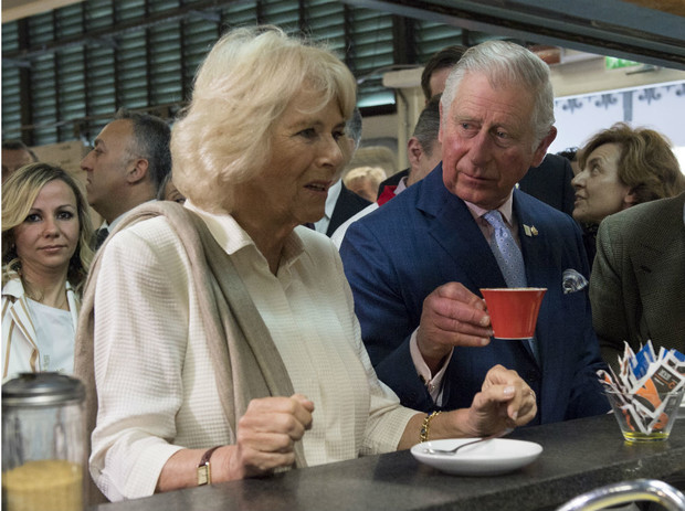 Фото №3 - Почему герцогиня Камилла не любит путешествовать с принцем Чарльзом