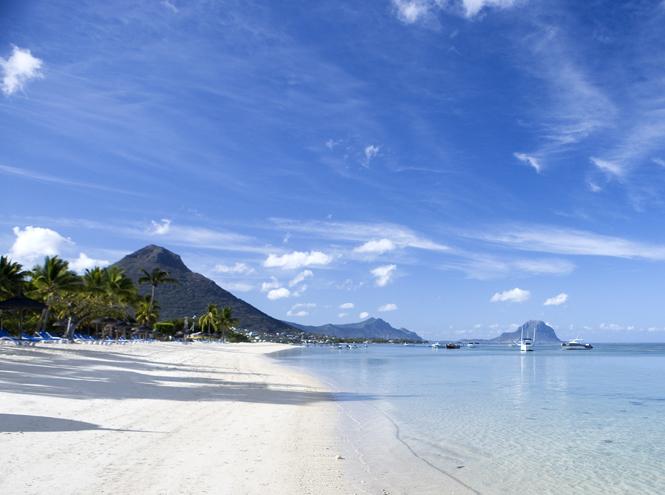 Фото №12 - Маврикий: двадцать три цвета счастья