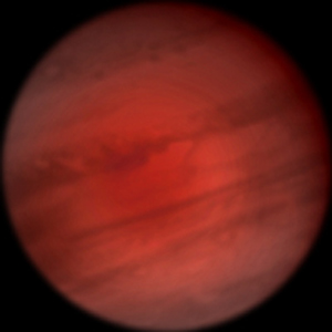 Фото №1 - Посланник Земли достиг Юпитера