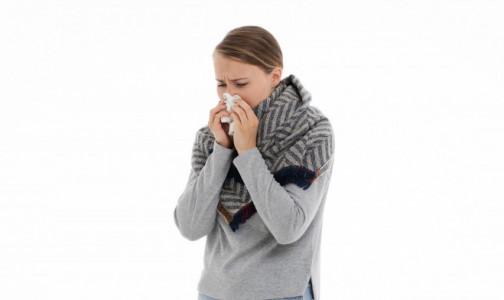 Фото №1 - Симптомы сезонной аллергии могут напоминать COVID-19. Как их различить - полезные подсказки
